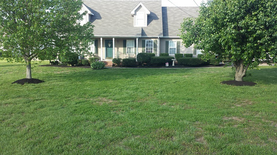 Landscaping Murfreesboro Tn 3 Precision Lawn Care