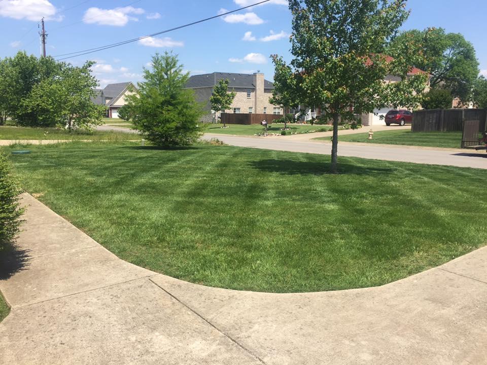 Murfreesboro Tn Landscaping