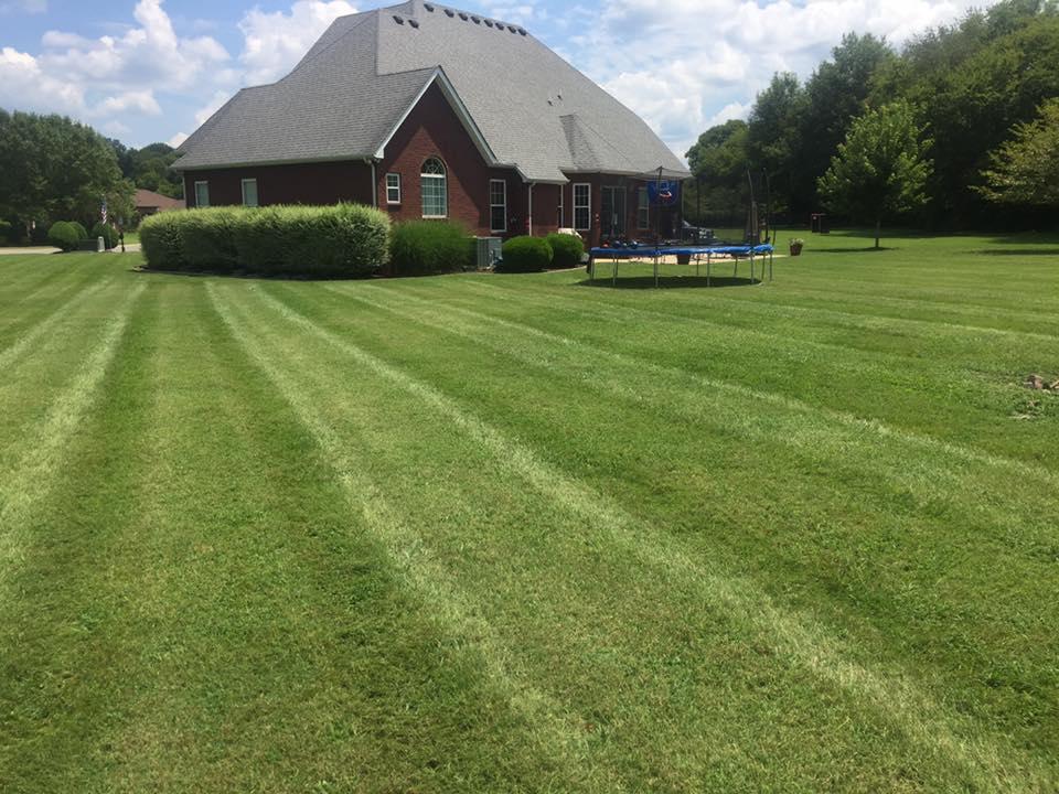 Lawn Care Murfreesboro Tn Precision Lawn Care